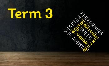 Term 3 - Undergraduates